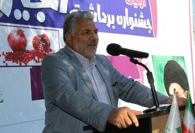 چهارمین جشنواره انار و اولین جشنواره برداشت انجیر در مرکز نوردوز ارس برگزار شد