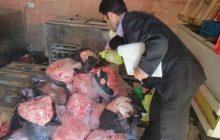بیش از ۴۸۰ تن گوشت و فرآورده خام دامی غیر مجاز در آذربایجان شرقی کشف شد